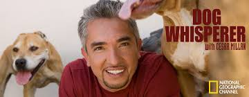 Dog Whisperer With Cesar Millan: Season 9