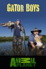Gator Boys: Season 4