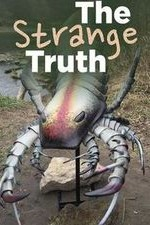 The Strange Truth: Season 1