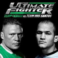 The Ultimate Fighter: Season 11