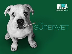 The Supervet: Season 4
