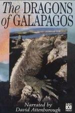 The Dragons Of Galapagos