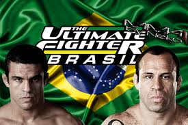 The Ultimate Fighter Brazil: Season 4