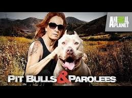 Pit Bulls And Parolees: Season 6