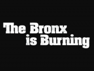 The Bronx Is Burning: Season 1