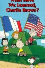 What Have We Learned Charlie Brown